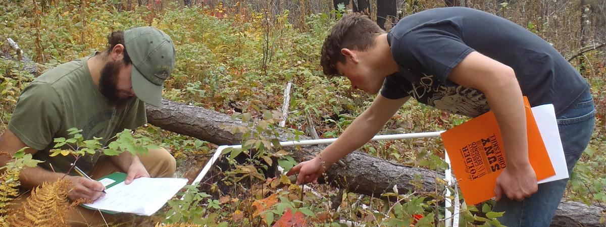 students conducting plant community composition analysis
